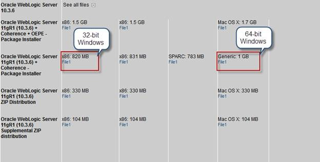 Oracle Forms 11g and PITSS CON Prerequisites for Windows
